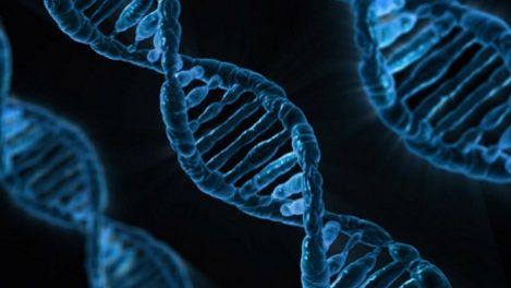 Gener förutsäger vilken cancerbehandling som kan vara effektiv